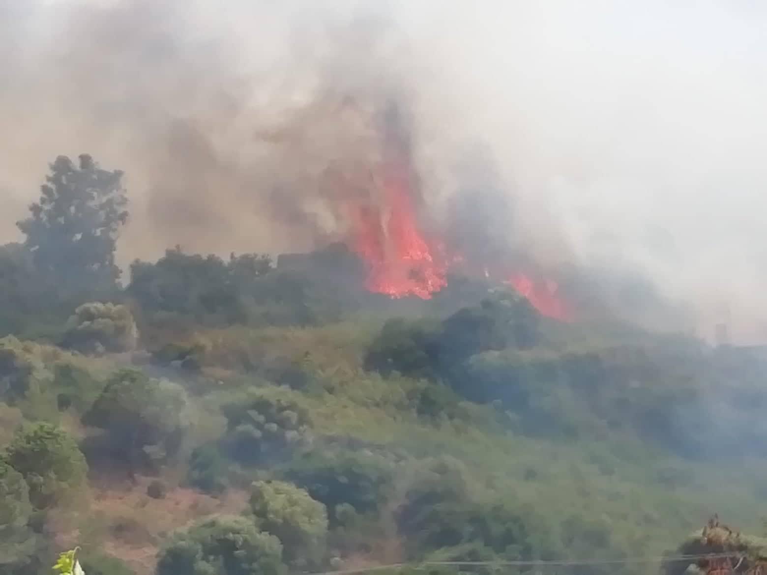 Incendio ad Agnone Bagni, pericolo vicino alle zone balneari: fiamme alte e fumo – FOTO e VIDEO
