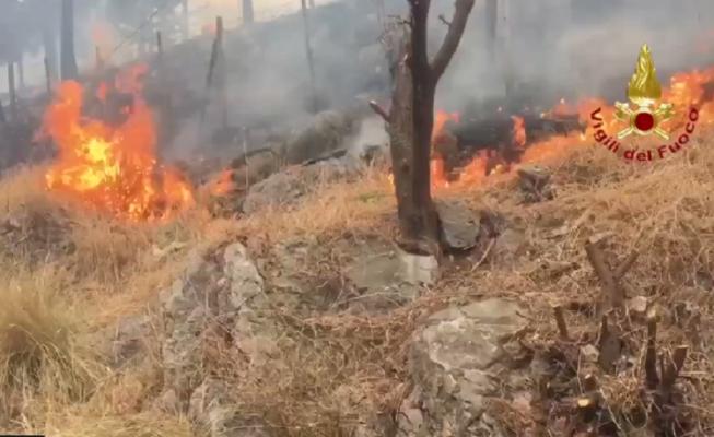 Sicilia in fiamme, evacuazioni e servizi in tilt da oriente a occidente – DETTAGLI e FOTO