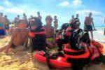 """Paura in spiaggia, bambini in difficoltà per il mare agitato: salvati da """"angeli"""" a quattro zampe"""