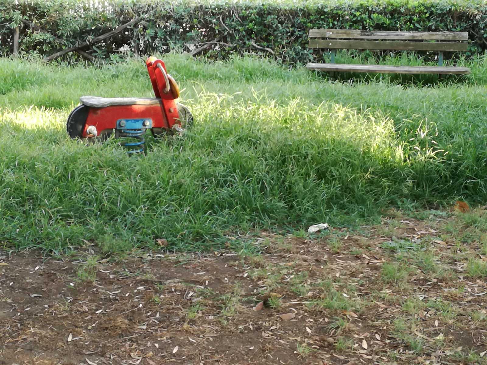Parco Madre Teresa: le FOTO delle fontane distrutte, di alberi caduti e dell'erba incolta