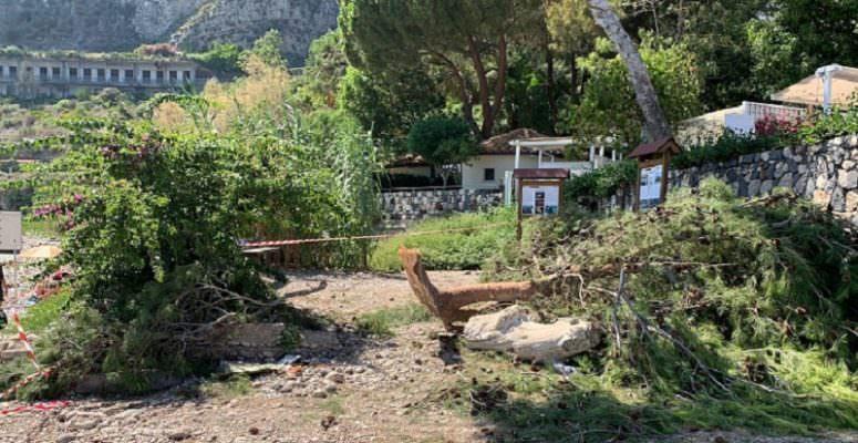 Taormina, tragedia sfiorata all'Isola Bella: ramo cade in spiaggia, 7 feriti