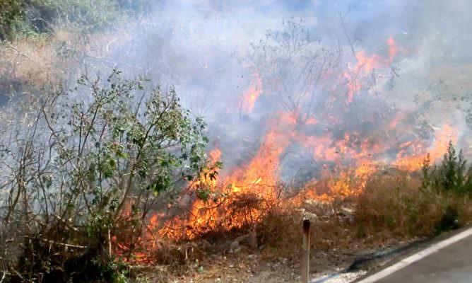 """Catania, incendi e rischio per i residenti. Parisi: """"Non si attiva ancora un piano di prevenzione"""""""