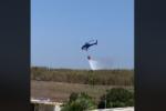 Fiamme alte a Pachino, coltivazioni distrutte in poche ore: vigili del fuoco e forestale sul posto – VIDEO