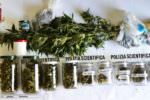 Mini serra di droga in casa, scatta provvedimento della Polizia di Stato: in manette 32enne
