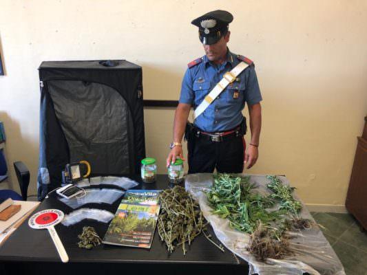 """Blitz dei militari, scoperchiata """"casa della droga"""": in manette un 26enne"""