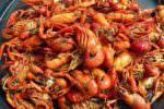 Trasporto illegale di prodotti ittici surgelati: 440 chili di merce sequestrata