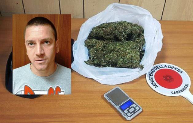 """Aci Catena, teneva """"al fresco"""" l'erba per i clienti: arrestato Carmelo Cannavò"""