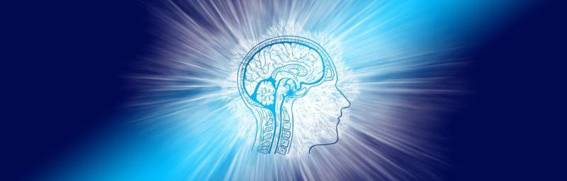 """Inventato """"decodificatore neurale"""" in grado di tradurre i pensieri in parole e frasi"""