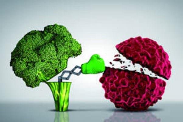 Alimentazione e cancro: l'importanza di una dieta corretta come prevenzione e supporto alla cura