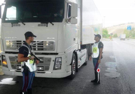Trasportava cavalli non registrati e privi di microchip sulla SS 626: camionista multato per oltre 2mila euro