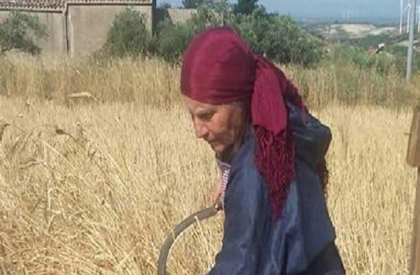La braccano, la prendono a calci e pugni e la buttano giù: anziana in fin di vita chiama i soccorsi