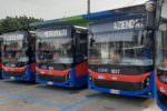 Catania, consegnati stamattina 27 nuovi bus Amt