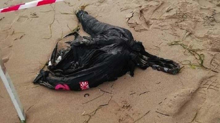 Macabro ritrovamento lungo il litorale, recuperato corpo di un giovane: giallo sull'identità e su quanto accaduto