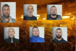 Blitz nel Catanese, maxi sequestro di marijuana: 6 arresti in due villette – NOMI, FOTO e VIDEO