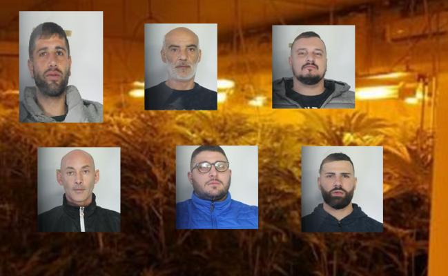 Blitz nel Catanese, maxi sequestro di marijuana: 6 arresti in due villette – NOMI, FOTO e VIDEO