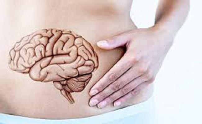"""Cervello e stomaco, come le emozioni influiscono sull'apparato digerente: il """"cervello addominale"""""""