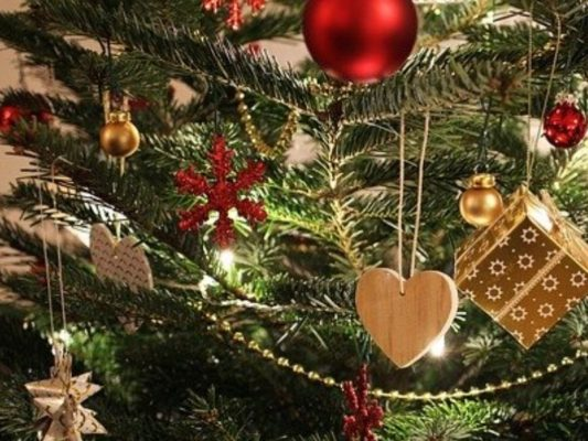 Addobbi Di Natale.Alberi Di Natale Presepe Luci E Coccarde Al Via La Corsa