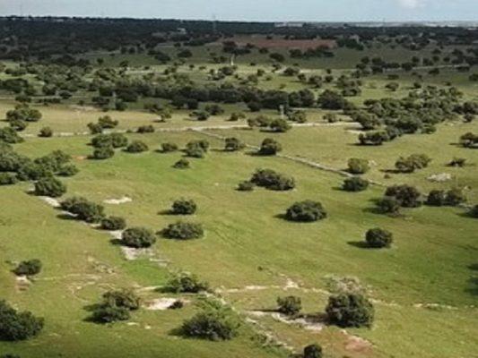 """Impianto biogas a Modica, ma al confine con Pozzallo. Ammatuna: """"Ci stiamo attrezzando per fare ricorso alla Regione"""""""