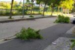 """Il vento forte """"spazza"""" Catania e provincia, tanti disagi e problemi: domani tregua e temperature in rialzo"""