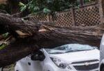 Weekend di maltempo in Sicilia, venti a 95 chilometri: oggi raffiche fino a 37 chilometri, temporali in arrivo