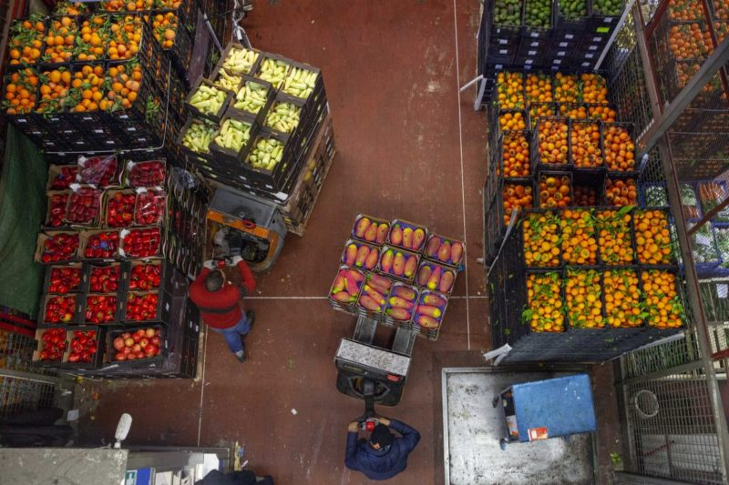 Etna, danni a piante e fiori: più colpiti ortaggi e agrumi, Coldiretti chiede stato di calamità naturale
