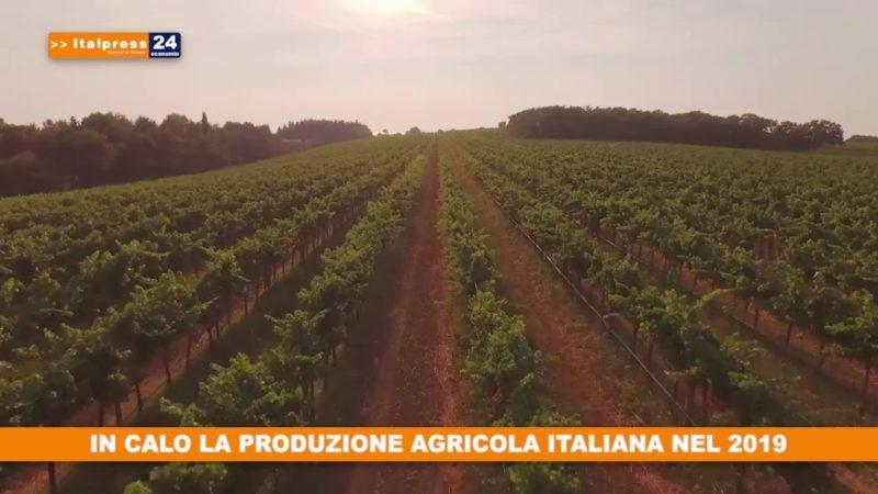 In calo la produzione agricola italiana