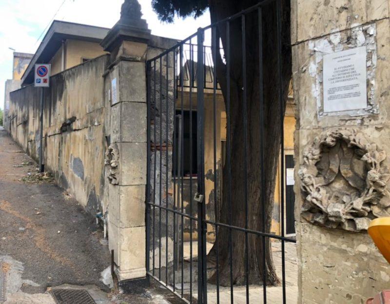 Aci Castello, enorme cipresso finisce sulle tombe a terra: cimitero chiuso al pubblico