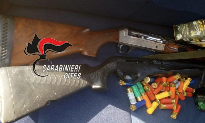 Caccia illegale: sequestrati 8 fucili e denunciati bracconieri per abbattimento di specie protette