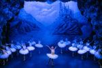 Il Balletto di Sanpietroburgo presenta il Lago dei Cigni domani 24 gennaio al Teatro Metropolitan di Catania