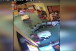 Insultati, umiliati, spintonati: bimbi di una scuola materna vittime impietrite di due maestre. Arrestate – VIDEO