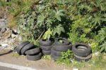 Discariche abusive nel quartiere San Nullo: presidente Buceti raccoglie le segnalazioni dei cittadini