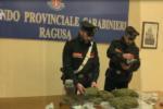 Marijuana nella busta della spesa, carabinieri beccano due pusher: scatta l'arresto – VIDEO