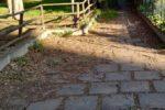 Area Verde parco Aldo Moro di Catania come una giungla: FOTO e segnalazione del Comitato Cittadino Vulcania