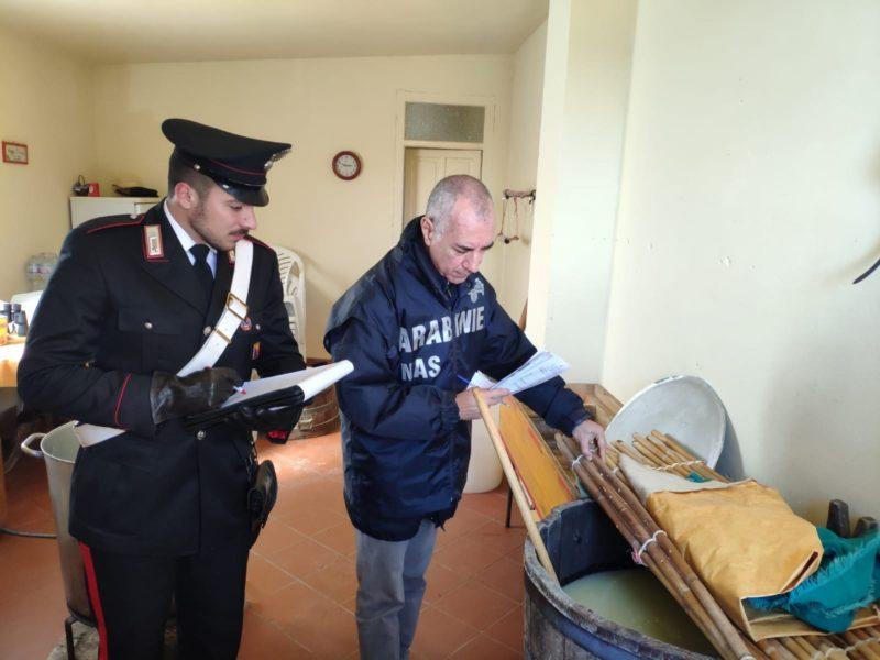 Sequestrati caseificio abusivo e 200 chili di alimenti in cattivo stato: titolare denunciata