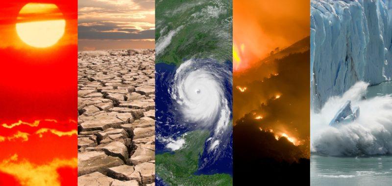 Australia in fiamme, Antartide senza neve, invasioni di locuste e plastica in mare: scenari terrificanti nella Giornata della natura 2020