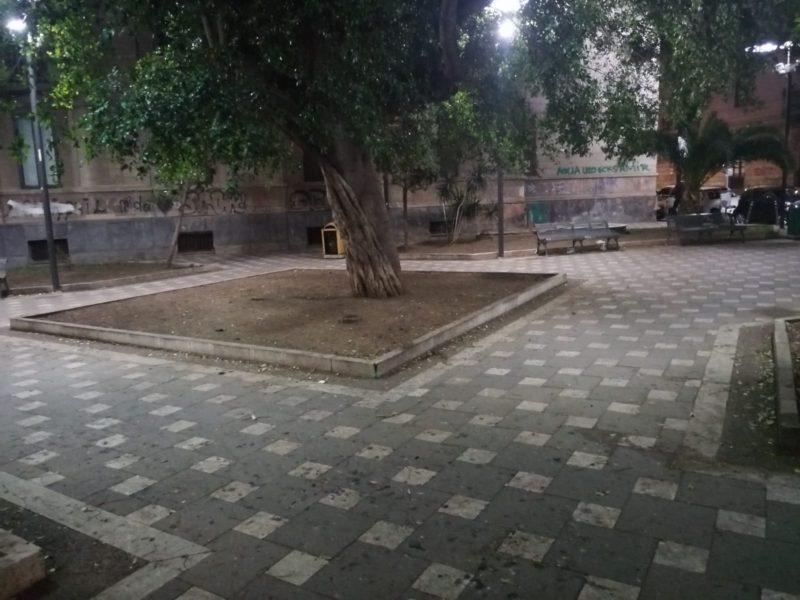 Catania, spazi verdi nel mirino dei vandali: interviene il comitato Terranostra
