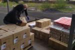 """Gravina di Catania, da martedì 31 marzo parte la distribuzione del """"pacco alimentare"""" per i più bisognosi"""