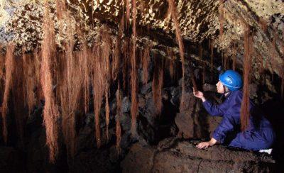 Micio Grotta dei Tedeschi