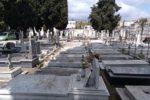 """Oltre 5mila fiori al cimitero di Aci Sant'Antonio per l'iniziativa """"Un fiore per essere presenti"""". Caruso: """"Importante gesto simbolico"""""""