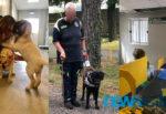 """Cani Guida Lions, il progetto gratuito al servizio dei non vedenti: """"Due occhi per chi non vede"""""""
