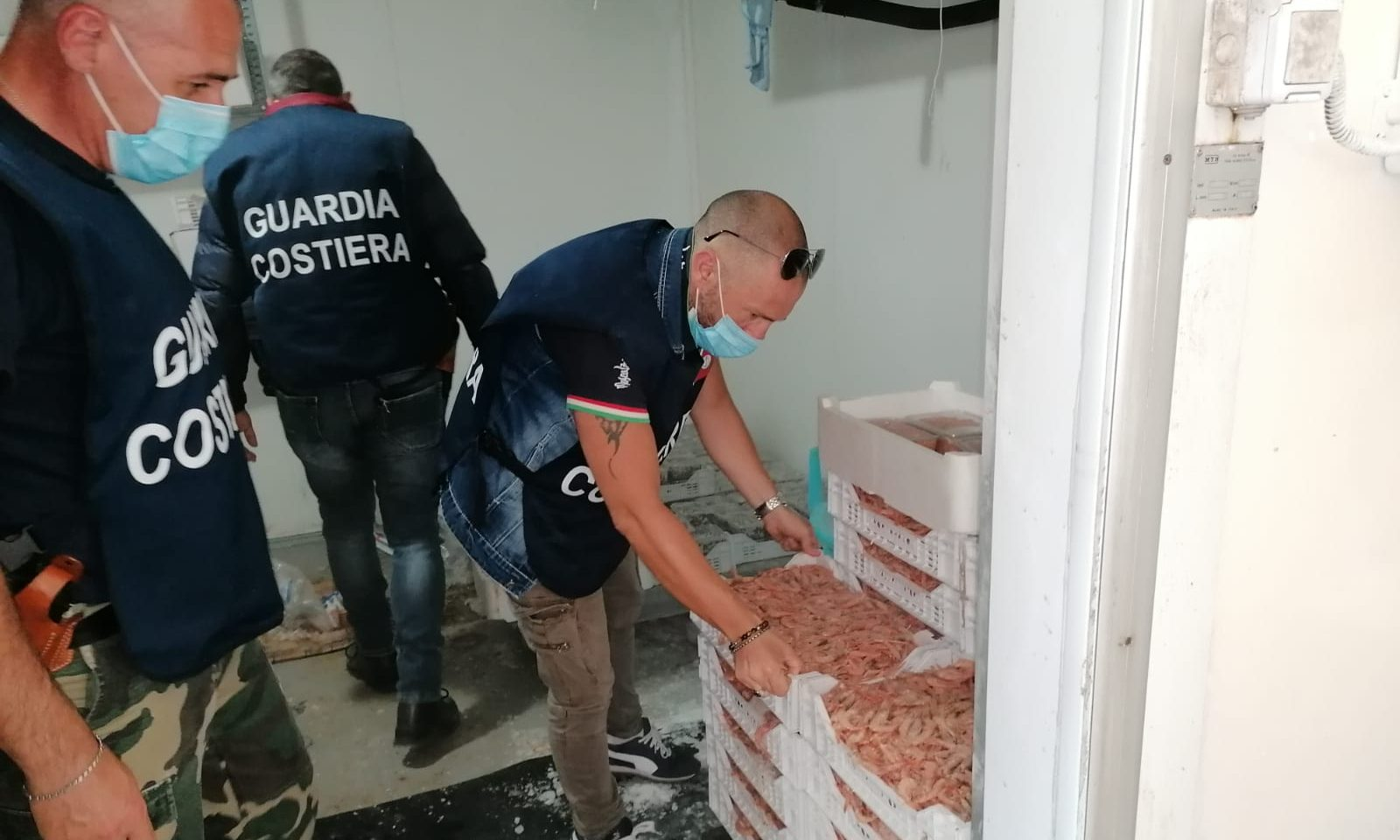 Ricciola, gamberi e sauri, maxi provvedimento della Capitaneria di Porto: 140 chili di pesce sequestrato