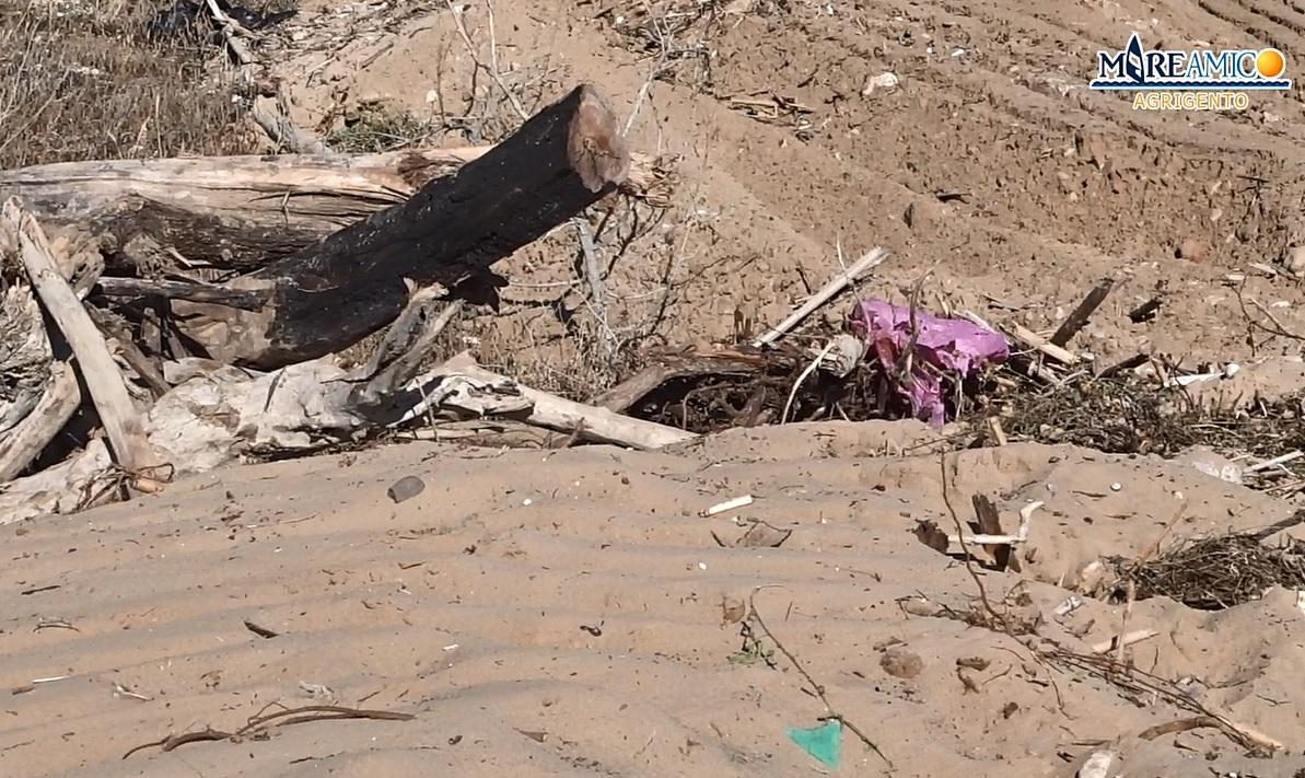 """Pulizia della spiaggia distrugge dune di sabbia, nidi di tartaruga e piante. """"Lavori abusivi e danno incalcolabile!"""" – VIDEO"""