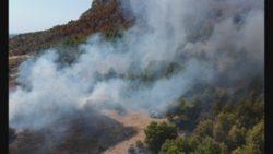 Incendio boschivo, macchia mediterranea devastata dalle fiamme: Canadair in azione