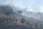 Fumo e fiamme alte alle porte della città, vigili del fuoco in azione con canadair – VIDEO