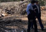 Boschetto della Playa: legname prodotto dopo riqualificazione ceduto gratis a chi farà richiesta