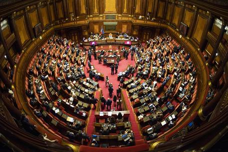 """Senato, c'è l'ok per il voto ai 18enni: approvato il decreto legge, Letta: """"Passo concreto per dare voce ai giovani"""""""