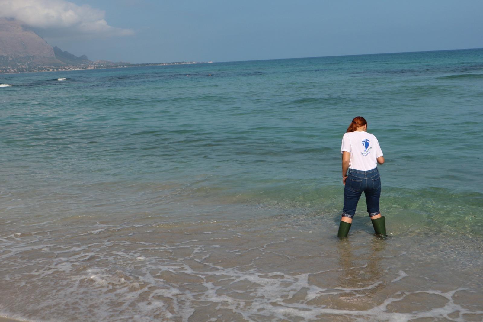 Mare inquinato in Sicilia: 15 punti su 26 analizzati da Legambiente risultato fuori norma