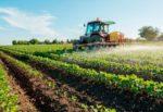 """""""Banca della terra"""", la Regione affida 430 ettari di terreni agli imprenditori agricoli. Musumeci: """"Nuove opportunità di lavoro"""""""