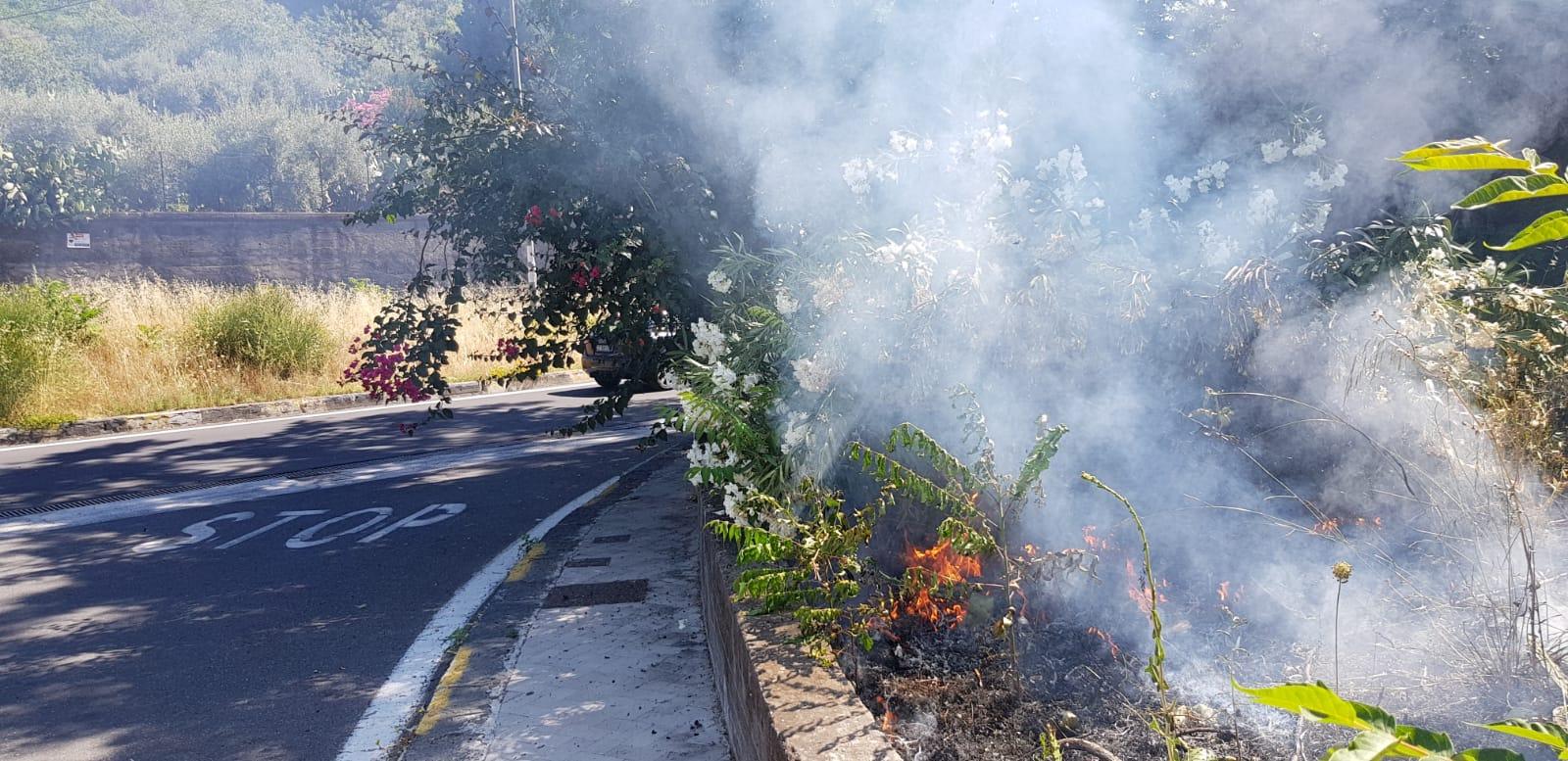 Allarme incendi a San Giovanni Galermo e San Nullo, la preoccupazione del consigliere Zingale