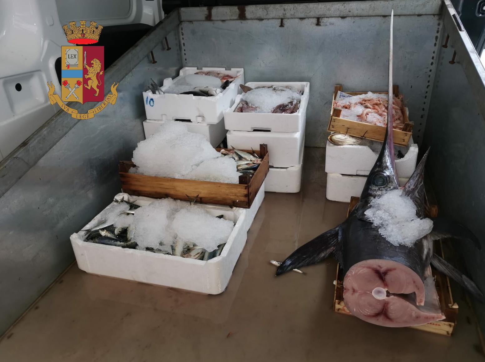 Controlli al mercato storico della Vucciria: due sequestri e multe per un totale di 20mila euro